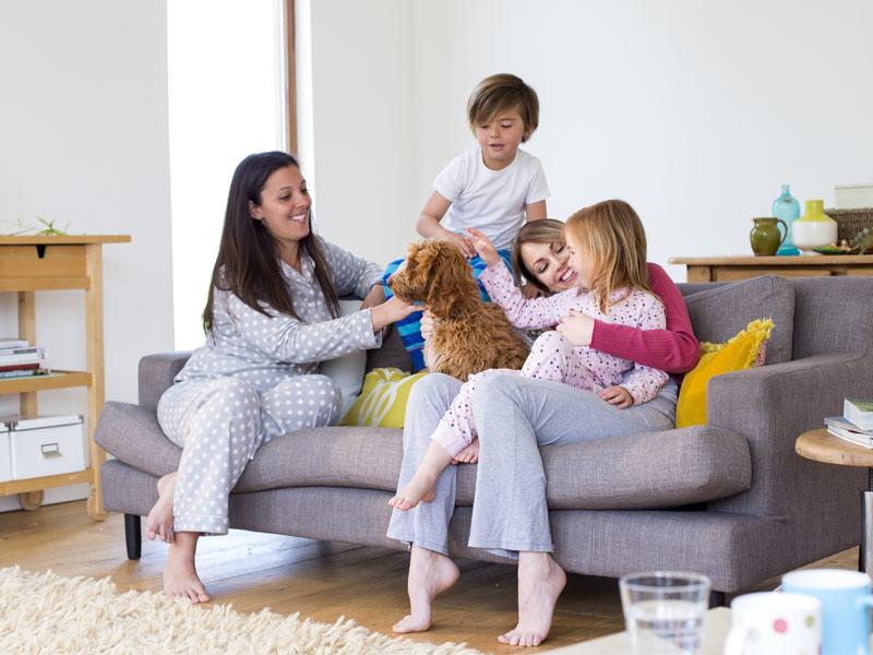 תא משפחתי לא מסורתי, הכרת זוגות חד מיניים כמשפחה